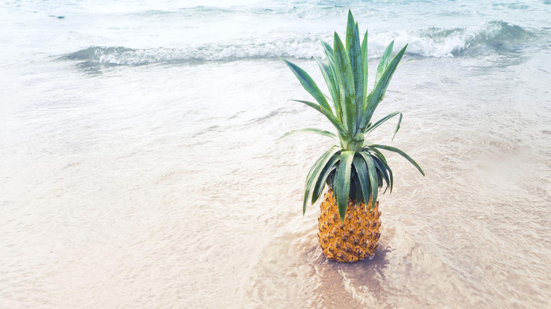 100 идей как провести лето